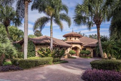 Celebration, Davenport, Kissimmee, Orlando, Windermere, Winter Garden Single Family Home For Sale: 9108 Isleworth Gardens Drive