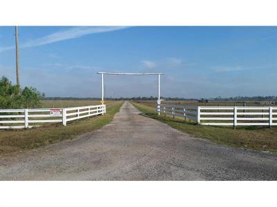 Okeechobee County Single Family Home For Sale: 14151 E Center Street