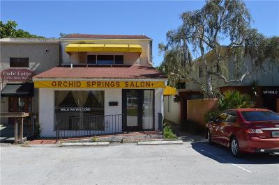 Winter Haven Commercial For Sale: 730 Overlook Drive