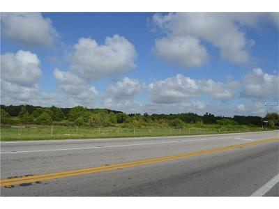 Winter Haven Residential Lots & Land For Sale: 4235 Recker Highway