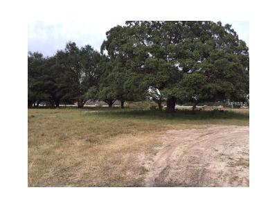 Polk City Residential Lots & Land For Sale: 0 Old Polk City Road E
