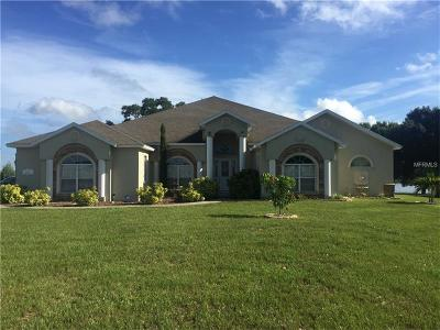 Haines City Single Family Home For Sale: 119 Scenic Highway