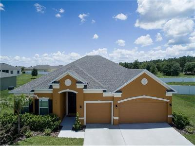 Haines City Single Family Home For Sale: 913 Fieldstone Way
