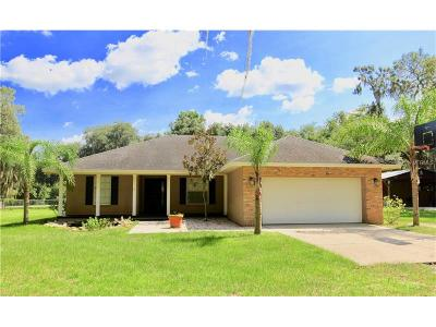 Lithia Single Family Home For Sale: 5365 Wood Road