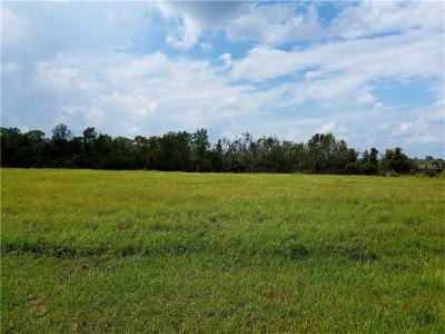 Auburndale Residential Lots & Land For Sale: 509 Adams View Lane