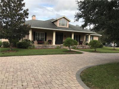 Haines City Single Family Home For Sale: 9055 Hatchineha Road
