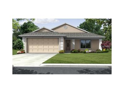 Lake County, Orange County, Osceola County, Polk County, Seminole County Single Family Home For Sale: 4572 Clubhouse Road