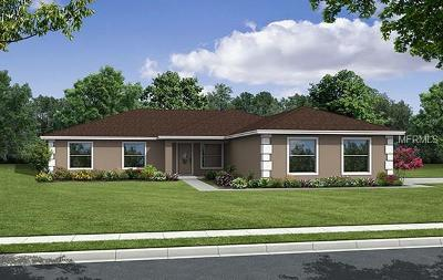 Lakeland Single Family Home For Sale: 4305 Meadowview Drive