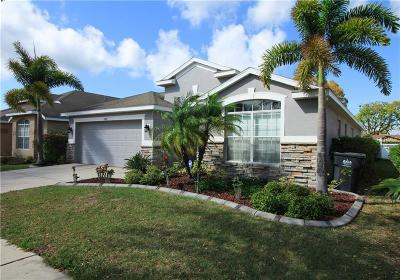 Ruskin Single Family Home For Sale: 1002 Barclay Wood Drive
