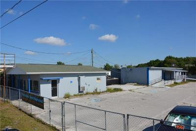 Winter Haven Commercial For Sale: 3465 Recker Highway