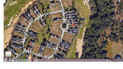 Residential Lots & Land For Sale: 7564 Excitement Drive