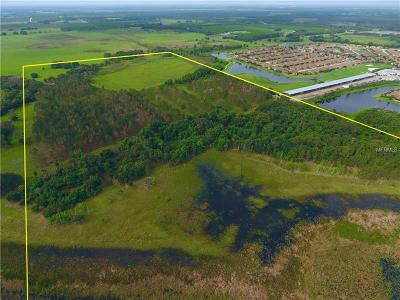 Winter Haven Residential Lots & Land For Sale: 0 Litchfield Loop