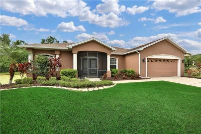 Winter Haven Single Family Home For Sale: 2117 Normandy Heights Lane