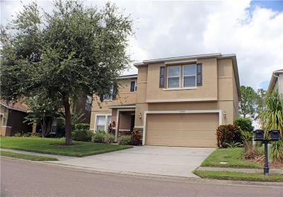 Lakeland Single Family Home For Sale: 6942 Lake Eaglebrooke Drive