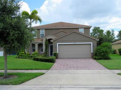 Kissimmee Single Family Home For Sale: 9116 Stromboli Court