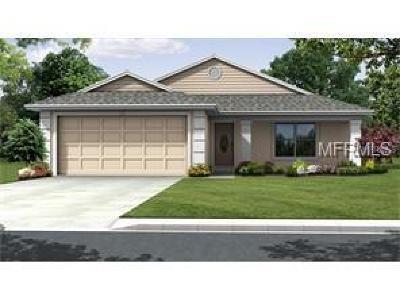Lakeland Single Family Home For Sale: 0 Tocoi Path