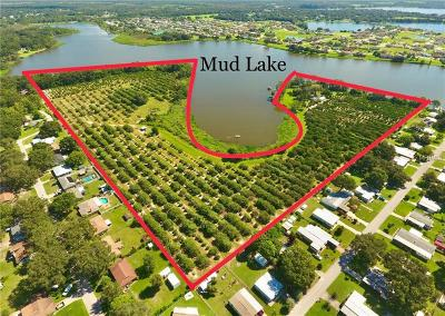 Polk City Residential Lots & Land For Sale: 5425 Duey Road