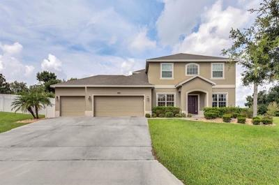 Clermont Single Family Home For Sale: 11804 Buttonhook Drive
