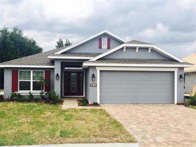Haines City Single Family Home For Sale: 645 Meadow Pointe Drive