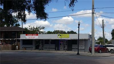 Winter Haven Commercial For Sale: 437 Avenue T NE