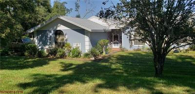 Haines City Single Family Home For Sale: 5550 E Johnson Ave