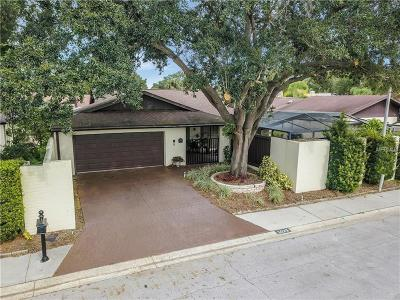 Tampa Single Family Home For Sale: 5029 Paloma Drive