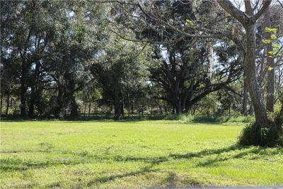 Winter Haven Residential Lots & Land For Sale: 212 9th Street SE