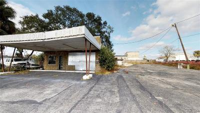 Lakeland Commercial For Sale: 123 Lake Beulah Drive