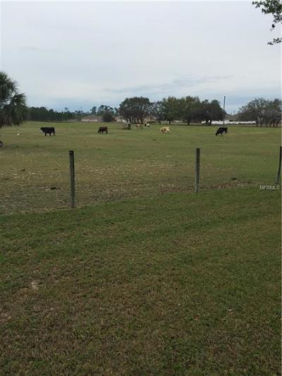 Haines City Residential Lots & Land For Sale: V 8 Ranch Road