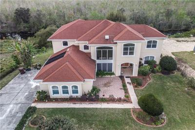 Haines City Single Family Home For Sale: 3065 Landings Court