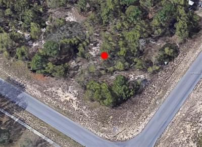 Spring Hill Residential Lots & Land For Sale: 13270 Lauren Drive