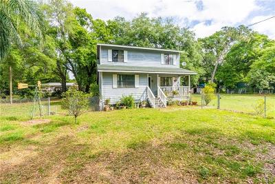 Riverview Single Family Home For Sale: 9902 Albyar Avenue