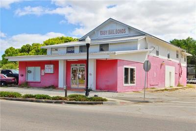 Bartow Commercial For Sale: 190 S Lb Brown Street