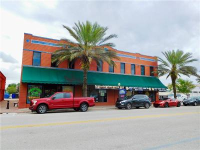 Auburndale Commercial For Sale: 117 E Lake Avenue