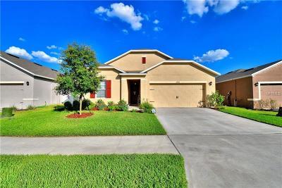 Lakeland Single Family Home For Sale: 3206 Bayou Bay Drive
