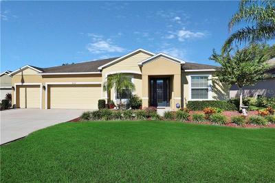 Lakeland Single Family Home For Sale: 6757 Hampshire Boulevard