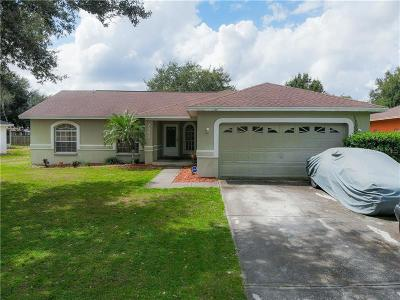 Lakeland Single Family Home For Sale: 7962 Benjamin Drive