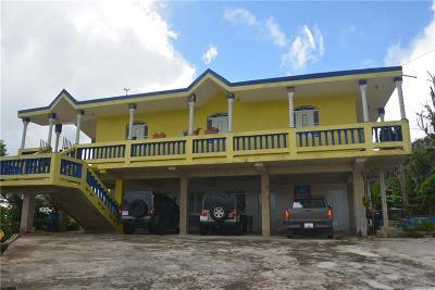 Orocovis PR Single Family Home For Sale: $156,000