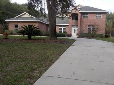 Deland Single Family Home For Sale: 1967 Hillcrest Oak Drive