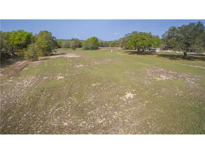 Lake County, Seminole County, Volusia County Residential Lots & Land For Sale: 18405 County Road 455