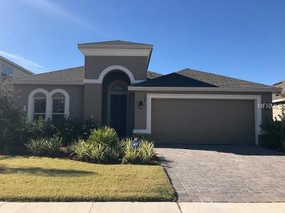 Clermont Single Family Home For Sale: 548 Kistler Circle