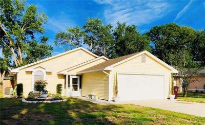 Saint Cloud Single Family Home For Sale: 4205 Natchez Trace Drive