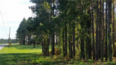 Clermont Residential Lots & Land For Sale: County Road 561