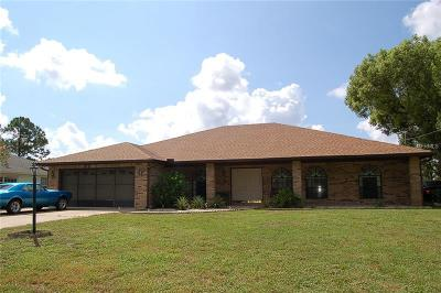 Seminole County, Volusia County Single Family Home For Sale: 2571 Elkcam Boulevard