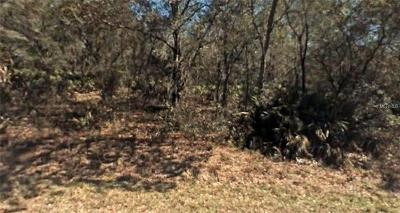 Crystal River Residential Lots & Land For Sale: 8979 N Star Blaze Drive