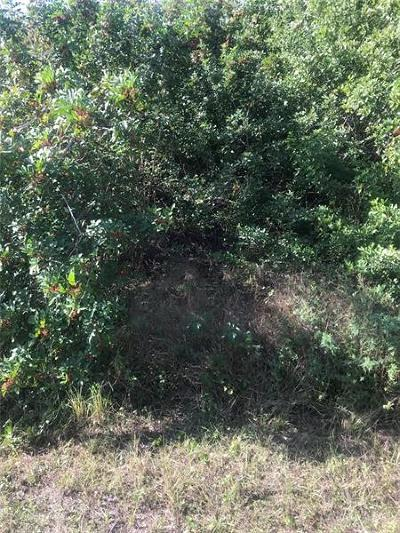 Residential Lots & Land For Sale: Sarletto Street