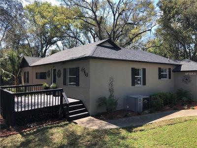 Mount Plymouth Single Family Home For Sale: 31023 County Road 435