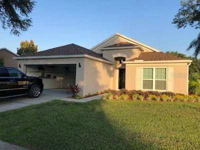 Pasco County Single Family Home For Sale: 4304 Fayette Drive