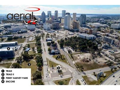 Tampa FL Residential Lots & Land For Sale: $1,400,000