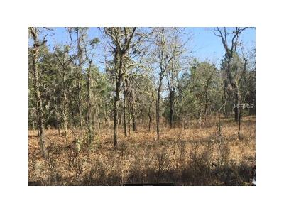 Levy County Residential Lots & Land For Sale: NE 147 Terrace